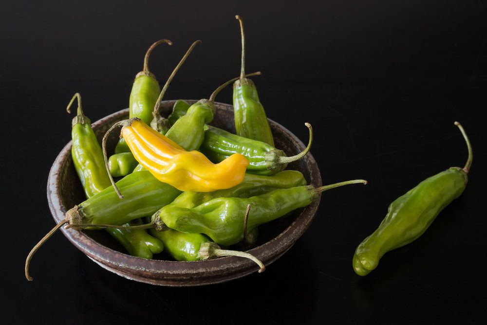 """""""Pretty Pickles"""" Great Pick for Next Picnic or Outdoor Affair"""